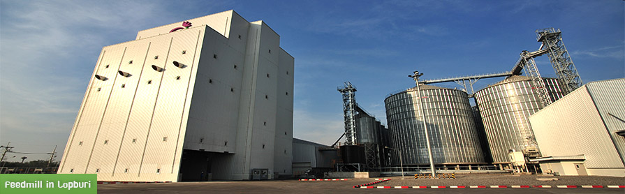 feedmill in lopburi